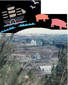 あつぎ豚のふるさと神奈川・厚木、養豚の背景