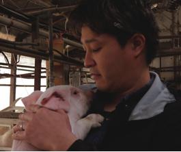 愛情込めて豚を飼育しています