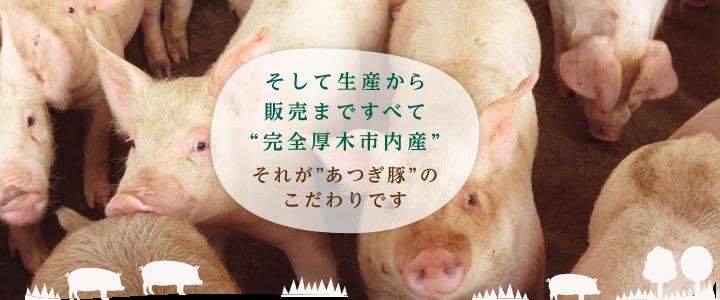 """生産から販売まですべて """"完全厚木市内産""""それが""""あつぎ豚""""の誇りです"""
