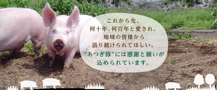 """これから先、何十年、何百年と愛され、地域の皆様から語り続けられてほしい。""""あつぎ豚""""には感謝と願いが込められています。"""